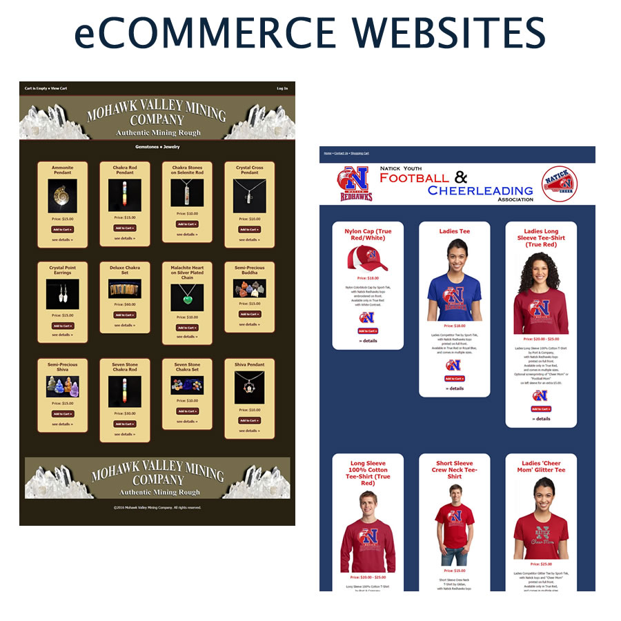 Custom designed E-commerce Websites